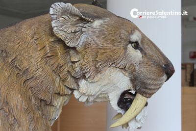 2013-3-27-tigre-preistorica