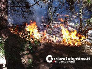 CRONACA_incendio-macchia
