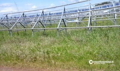 pannelli-fotovoltaici-rubat
