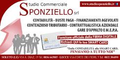 studio-commerciale-sponziel