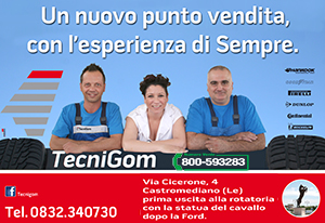 Tecnigom2