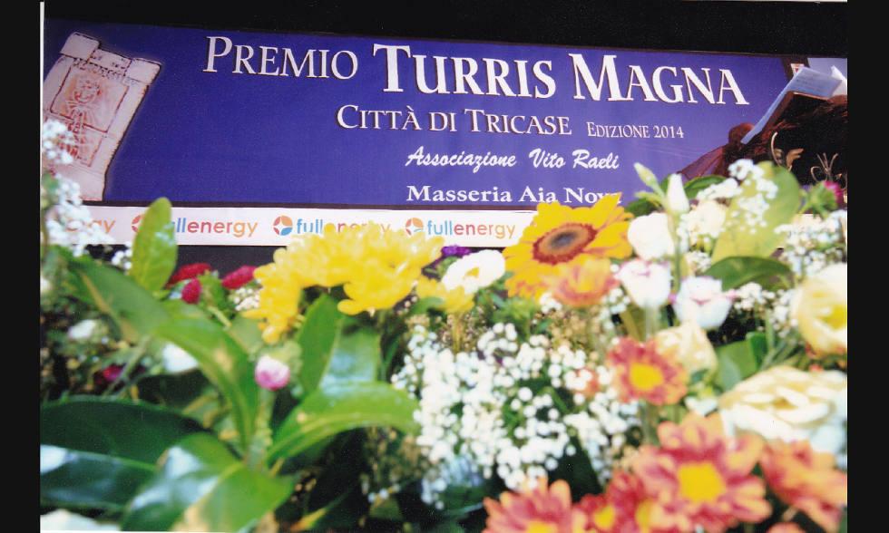 magna-turris