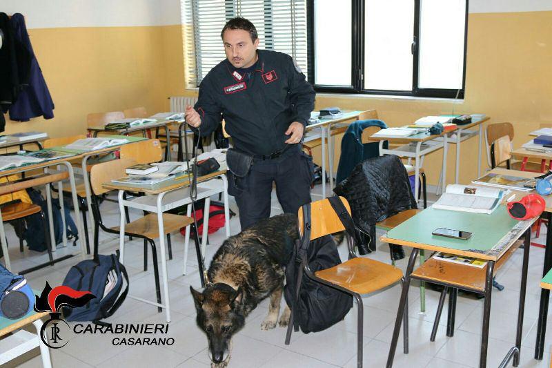 Droga a scuola: a Casarano carabinieri in azione
