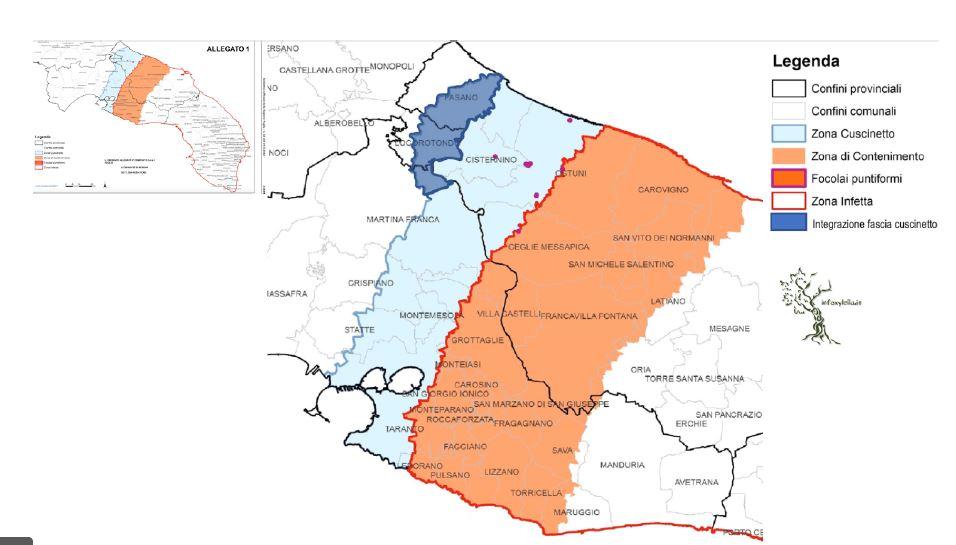 Emergenza Xylella La Zona Cuscinetto E Arrivata Alla Provincia Di Bari