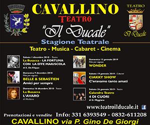 cavallino teatro ducale1
